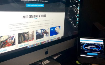 Dustbusters Auto Detailing Website